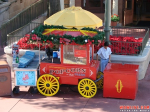 Magic Kingdom Popcorn Cart